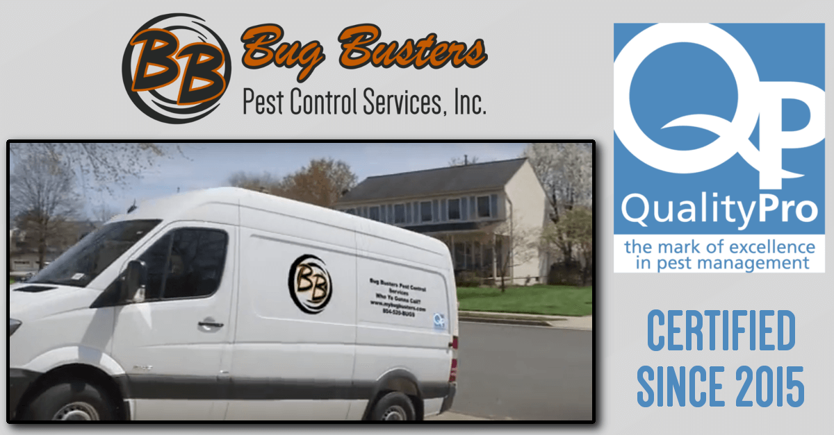 BUG BUSTERS IS A QUALITYPRO CERTIFIED COMPANY