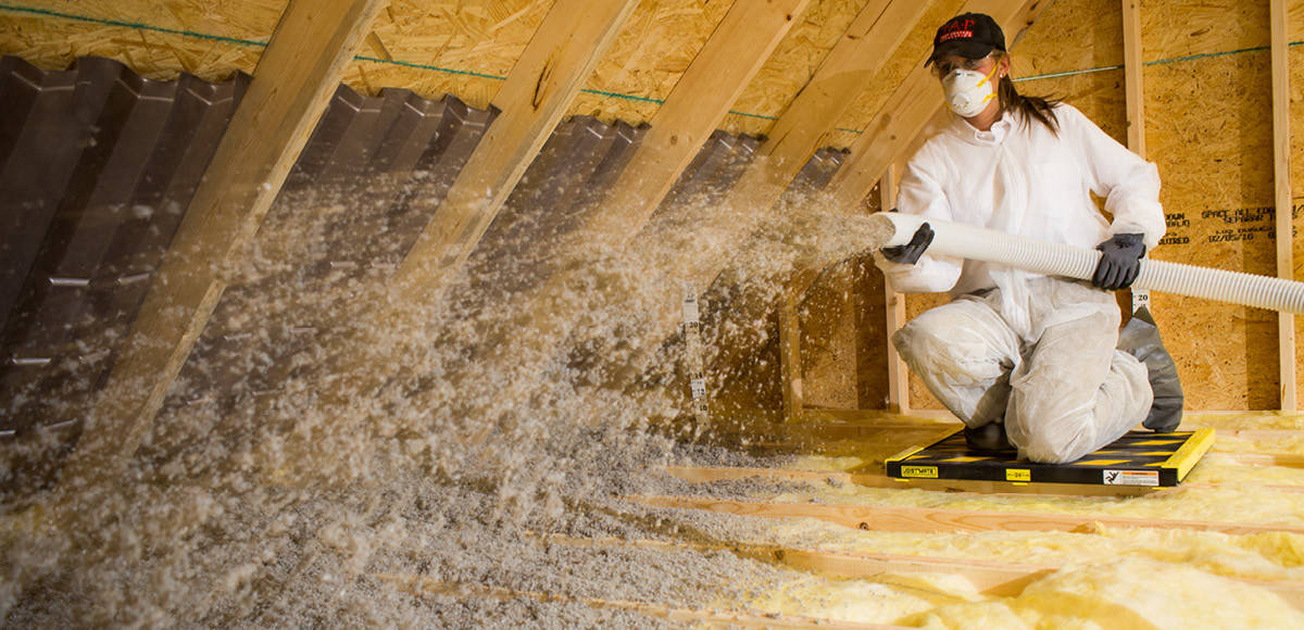 Bug Busters Pest Control Keeping Your Home Healthy with TAP Insulation